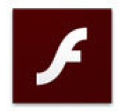Flash Using Websites Search Script Coupons