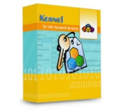 Kernel VBA Password Recovery - Corporate License Coupons