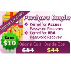 Password Recovery Software - Home License Coupons