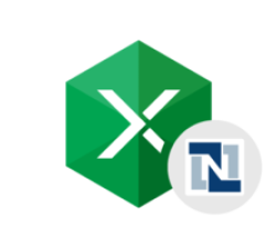 Excel Add-in for NetSuite Coupons