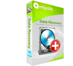 Amigabit Data Recovery Pro Coupons