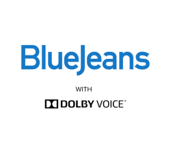 BlueJeans Standard Annual Coupons
