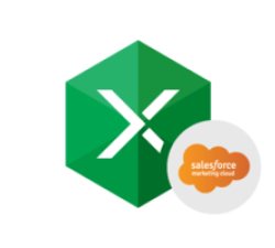 Excel Add-in for Salesforce Marketing Cloud Coupons