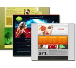 Web Template Packages (Each Packages) Coupons